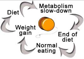 cycle of yo-yo dieting